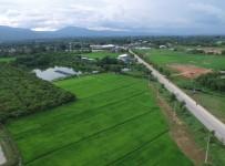 Chiangmai0020